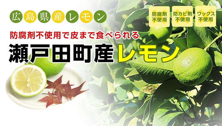 自社契約農場より高品質で安全な広島レモンを厳選してお届け!