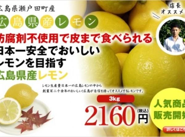 広島県瀬戸田産レモン 3kg(約24玉~30玉)