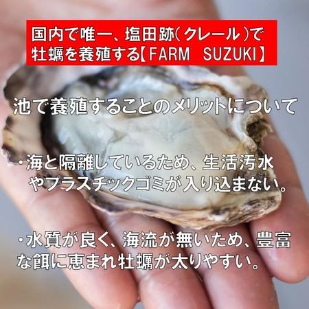 ファームスズキ 塩田熟成牡蠣使用  牡蠣フライ 4個入 塩で食べるカキフライ 広島 名産