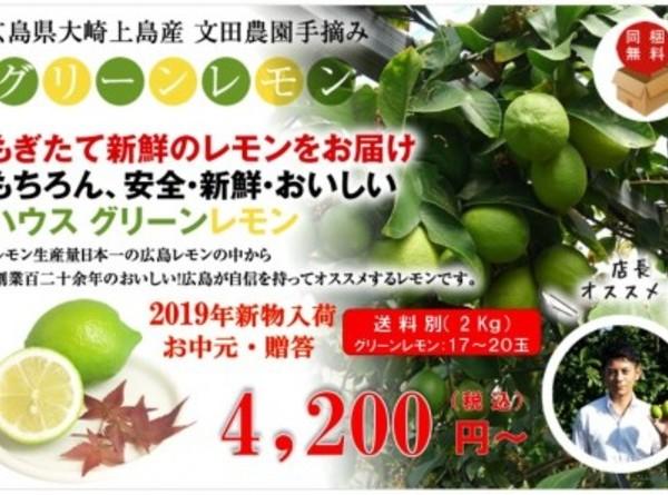 広島県大崎上島産ハウスグリーンレモン 2kg(約18玉~20玉)