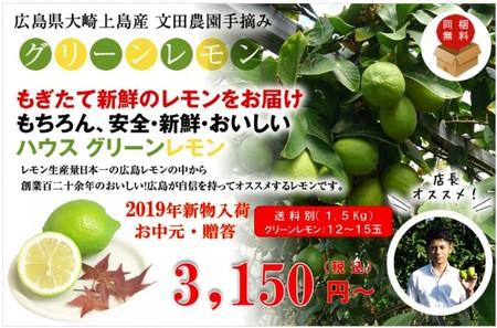 広島県大崎上島産ハウスグリーンレモン 1.5kg(約12玉~15玉)