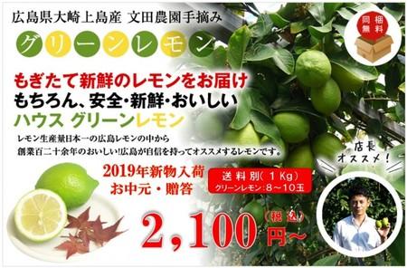 広島県大崎上島産ハウスグリーンレモン 1kg(約8玉~10玉)