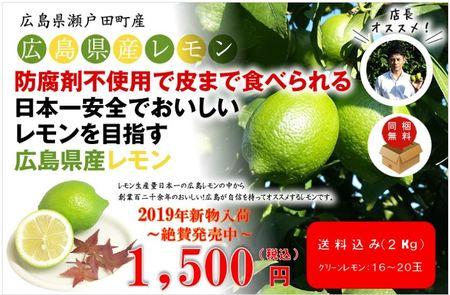 広島県瀬戸田産レモン 2kg(約16玉~20玉)
