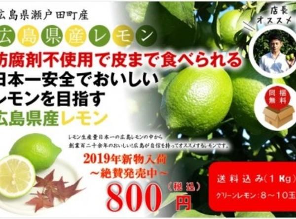 広島県瀬戸田産グリーンレモン 1kg(約8玉~10玉)