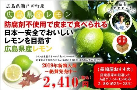 広島県瀬戸田産レモン 2.8kg(約25玉~28玉)